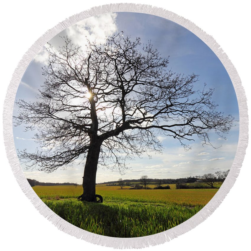 Lone Oak Tree In English Countryside Round Beach Towel featuring the photograph Lone Oak Tree In English Countryside by Julia Gavin
