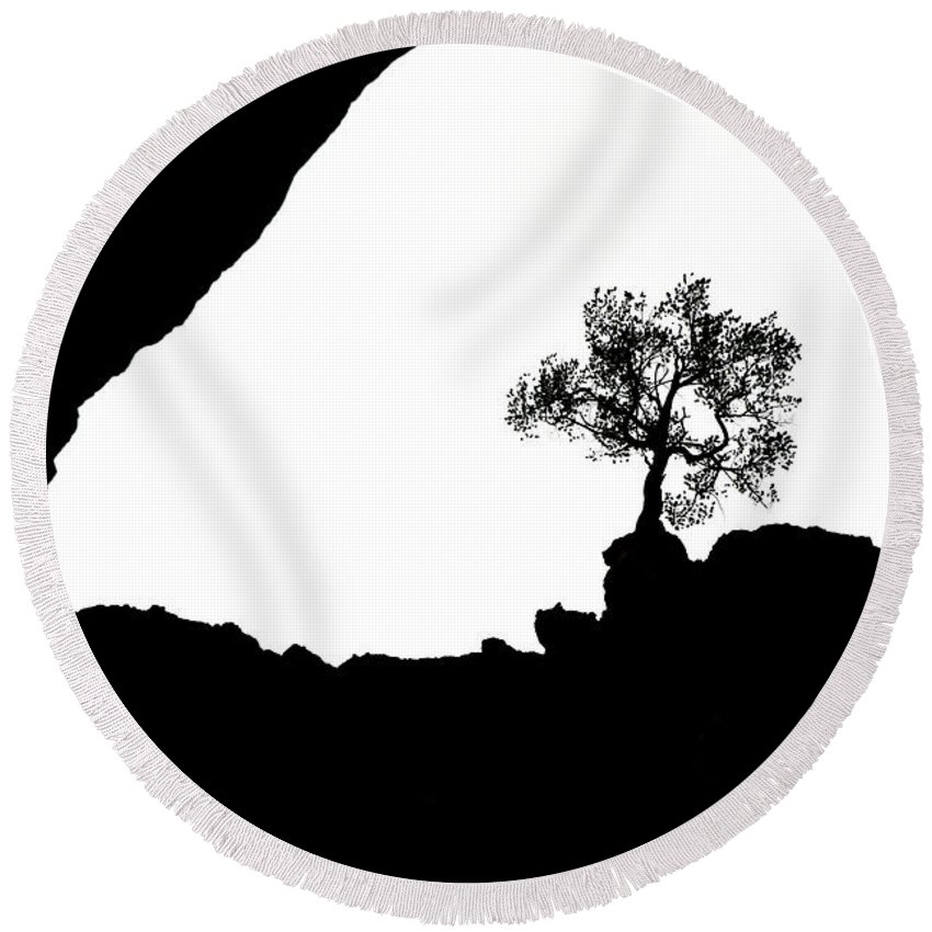 Tree Round Beach Towel featuring the photograph Looking Up by Marilyn Hunt