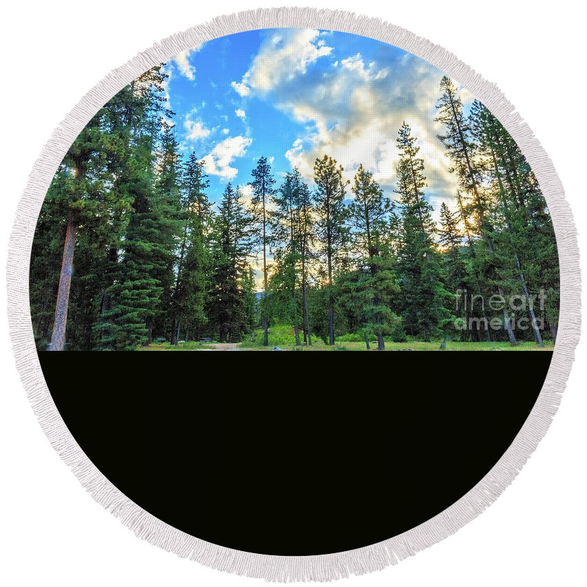 Plants Round Beach Towel featuring the photograph Morning Light by Robert Bales