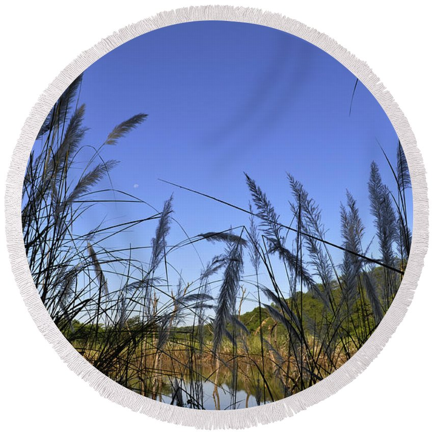 Nature Round Beach Towel featuring the photograph Nature by Bliss Of Art