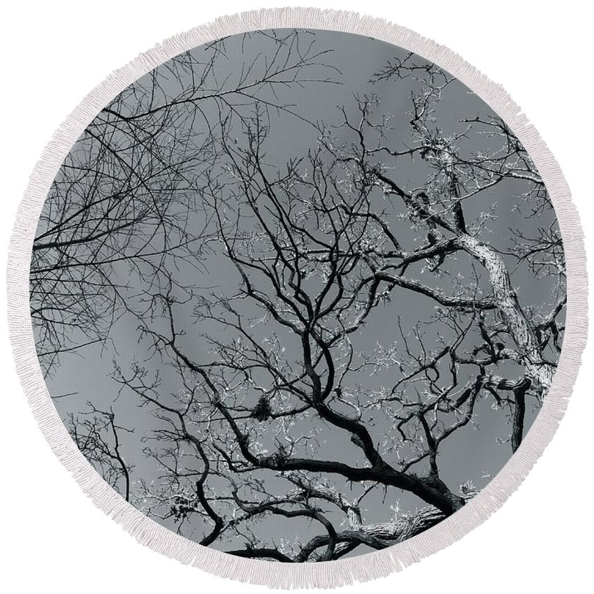 Trees Round Beach Towel featuring the photograph oak by Julian Grant
