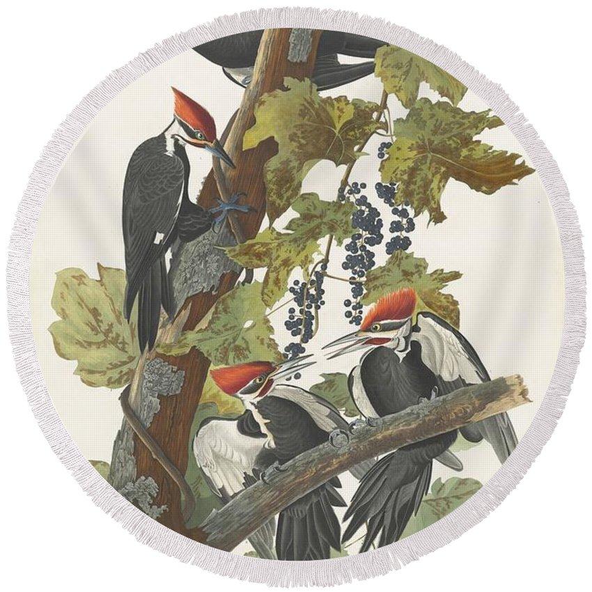Woodpecker Round Beach Towels