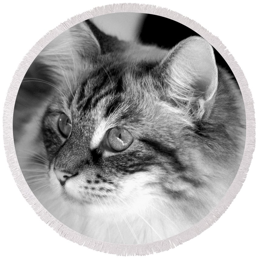 Clay Round Beach Towel featuring the photograph Polly by Clayton Bruster