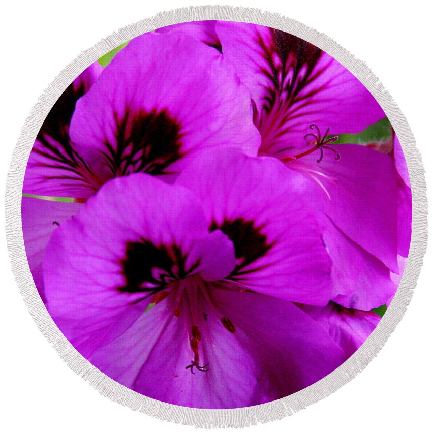 Purple Flowers Round Beach Towel featuring the photograph Purple Flowers by Anthony Jones