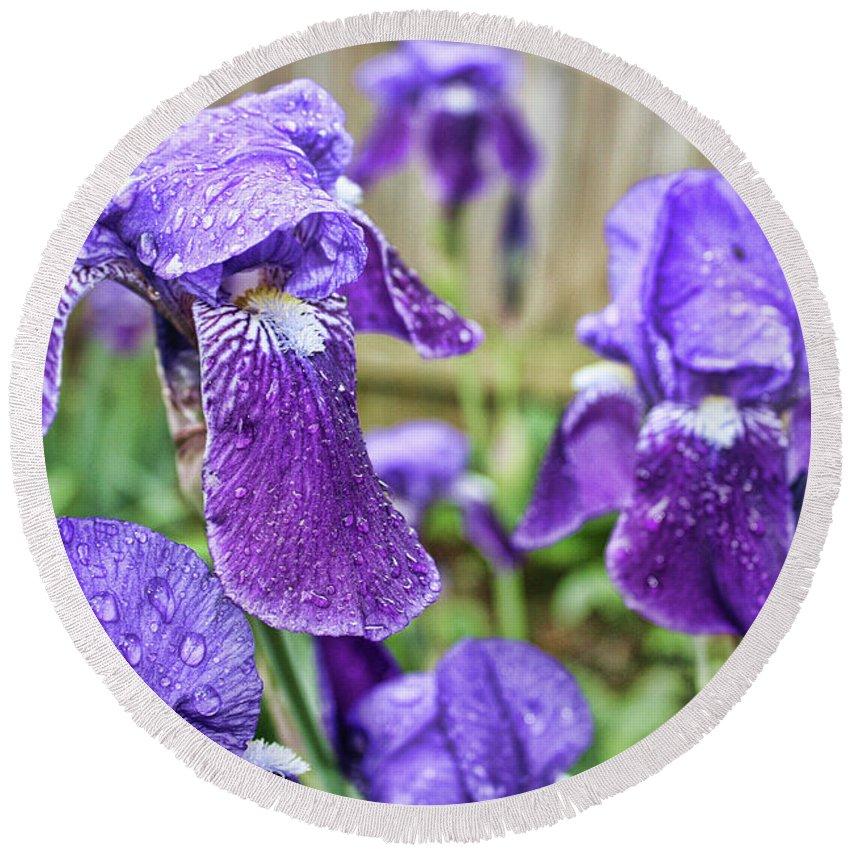 Elegant Round Beach Towel featuring the photograph Purple Iris by Alexander Butler