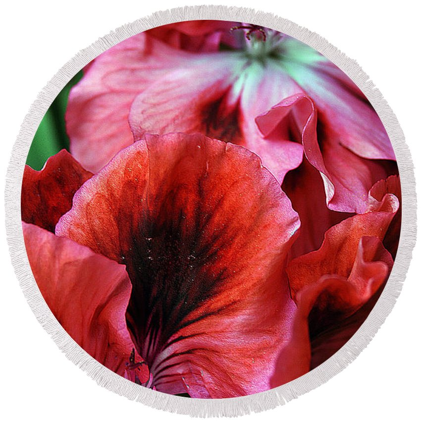 Clay Round Beach Towel featuring the photograph Red Floral by Clayton Bruster