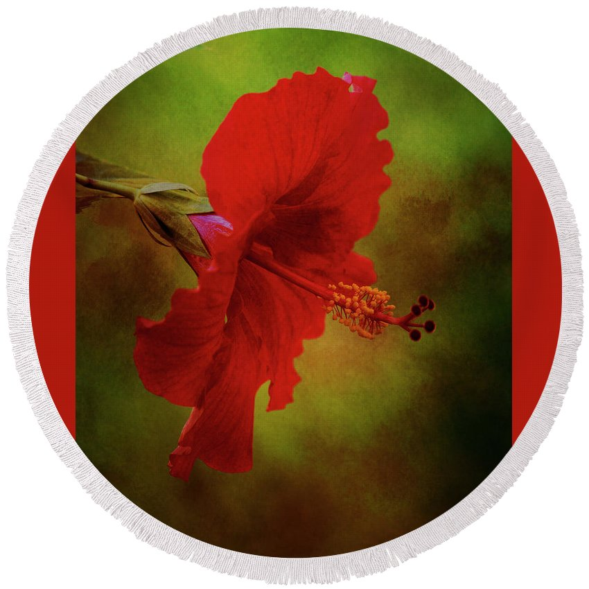 Red Hibiscus Round Beach Towel featuring the photograph Red Hibiscus Art by Mary Bellew