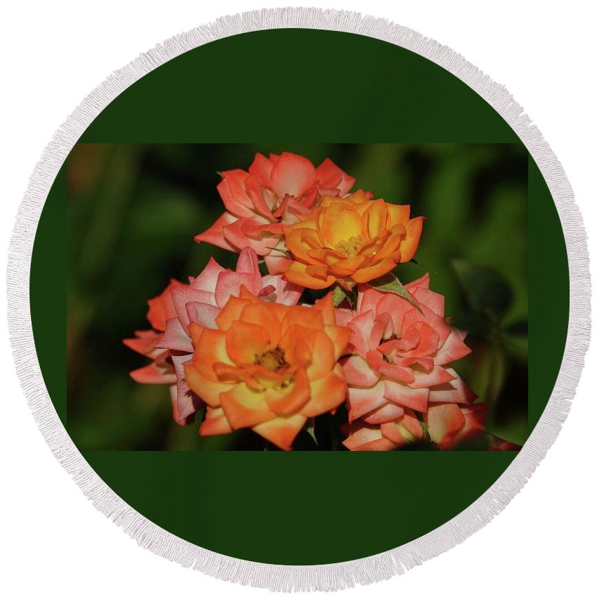 Pink Roses Round Beach Towel featuring the photograph Pink And Orange Roses by Elizabeth Waitinas