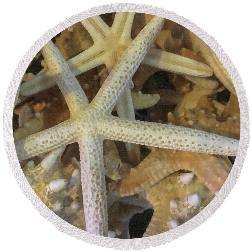 Starfish Round Beach Towel featuring the photograph Starfish Treasure by Dale Powell