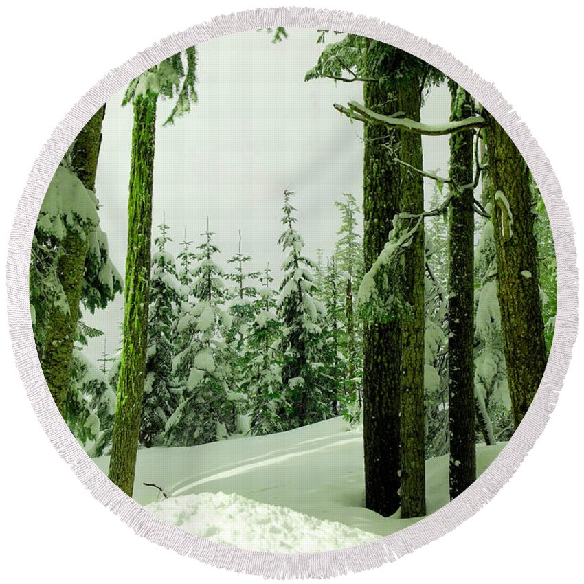 Snow Round Beach Towel featuring the photograph Snow In The Forest by Jeff Swan