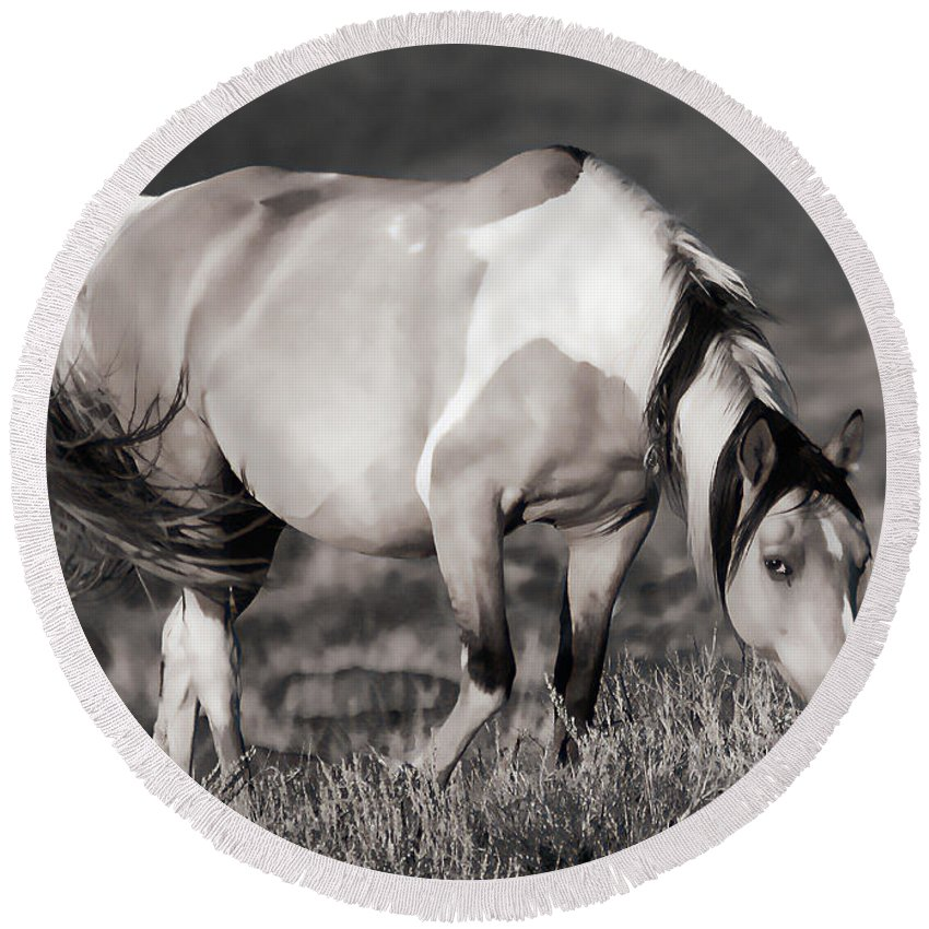 Horses Round Beach Towel featuring the photograph Sunset Graze by Athena Mckinzie