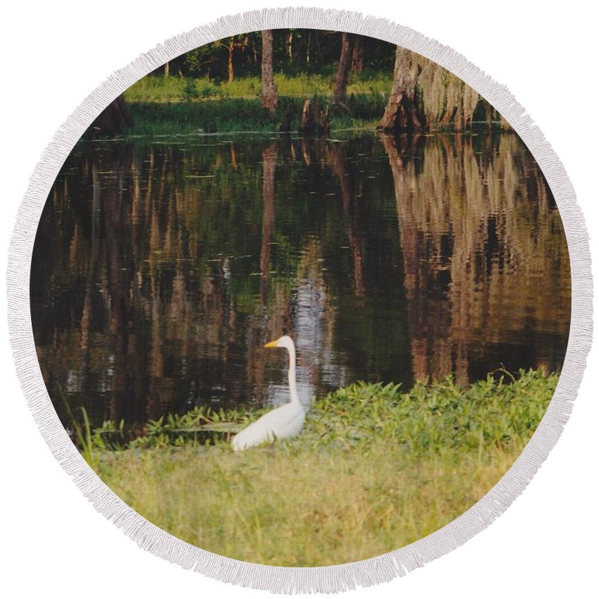 Landscape Round Beach Towel featuring the photograph Swamp Bird by Michelle Powell