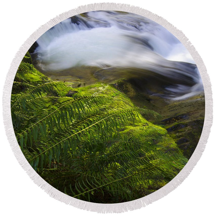 Sweet Creek Round Beach Towel featuring the photograph Sweet Creek Oregon 11 by Bob Christopher