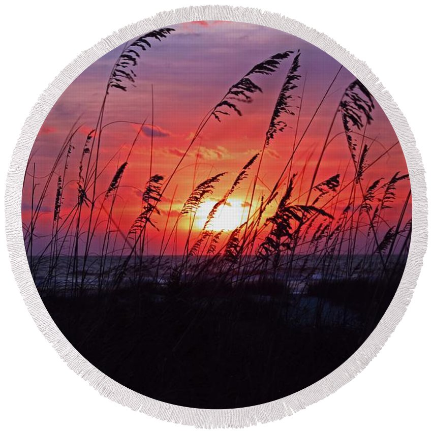 Sunrise Round Beach Towel featuring the photograph The Adventurous Ones by Michiale Schneider