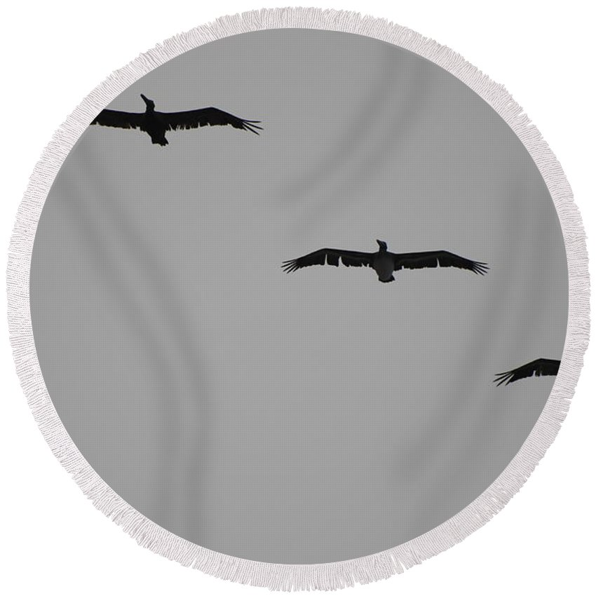 Black And White Round Beach Towel featuring the photograph The Birds by Rob Hans