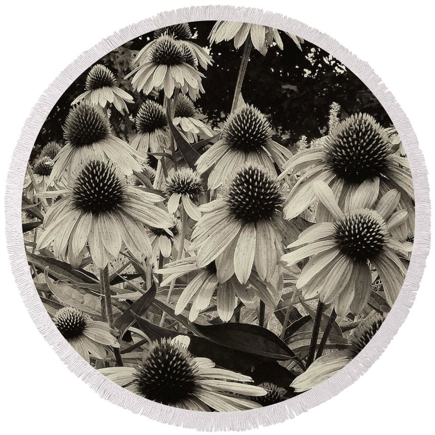 Ann Keisling Round Beach Towel featuring the photograph The Cones by Ann Keisling