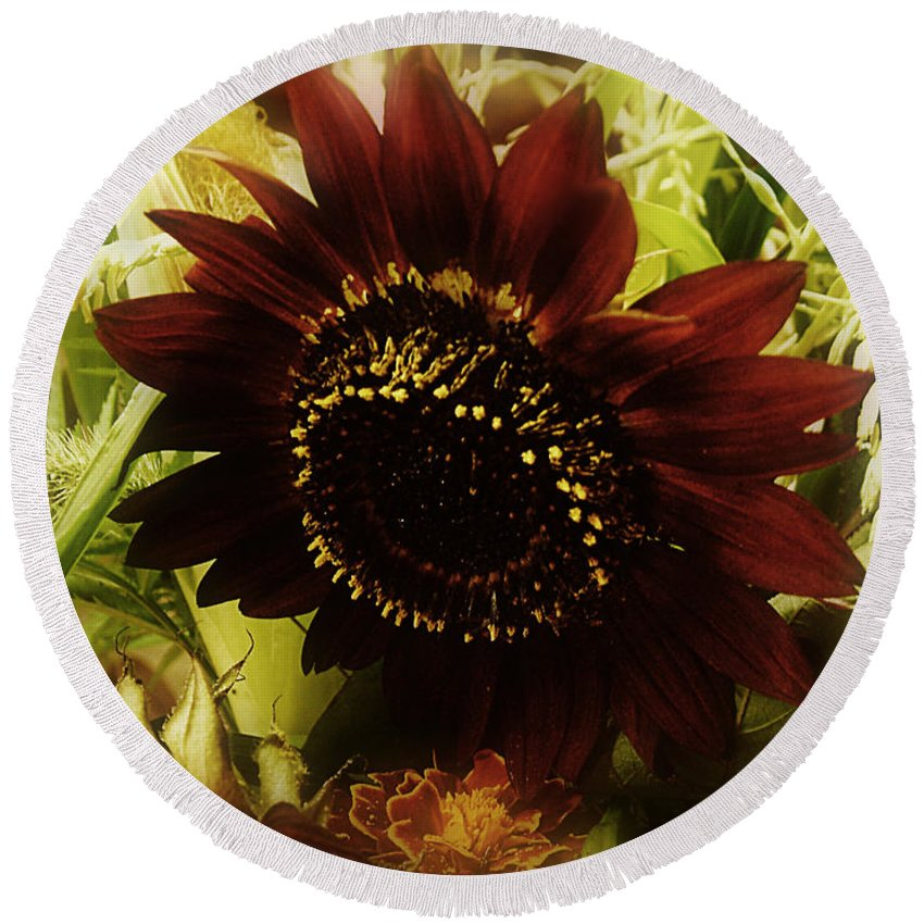 Sunflower Round Beach Towel featuring the photograph The Softness Of Autumn by RC DeWinter
