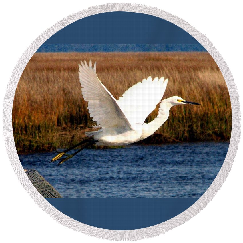 Egret Round Beach Towel featuring the photograph The Takeoff by J M Farris Photography