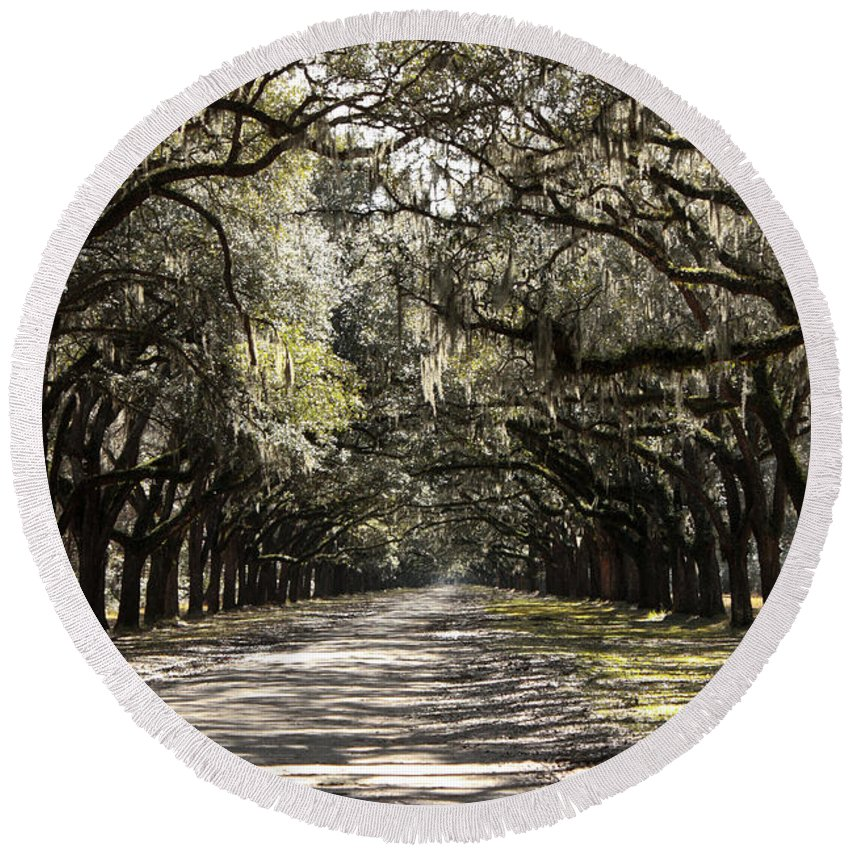 Live Oaks Round Beach Towel featuring the photograph This Way by Carol Groenen