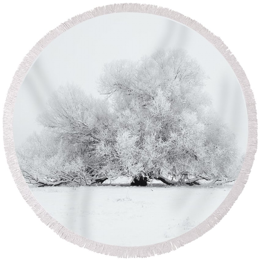 Winter Round Beach Towel featuring the photograph White On White by Mike Dawson