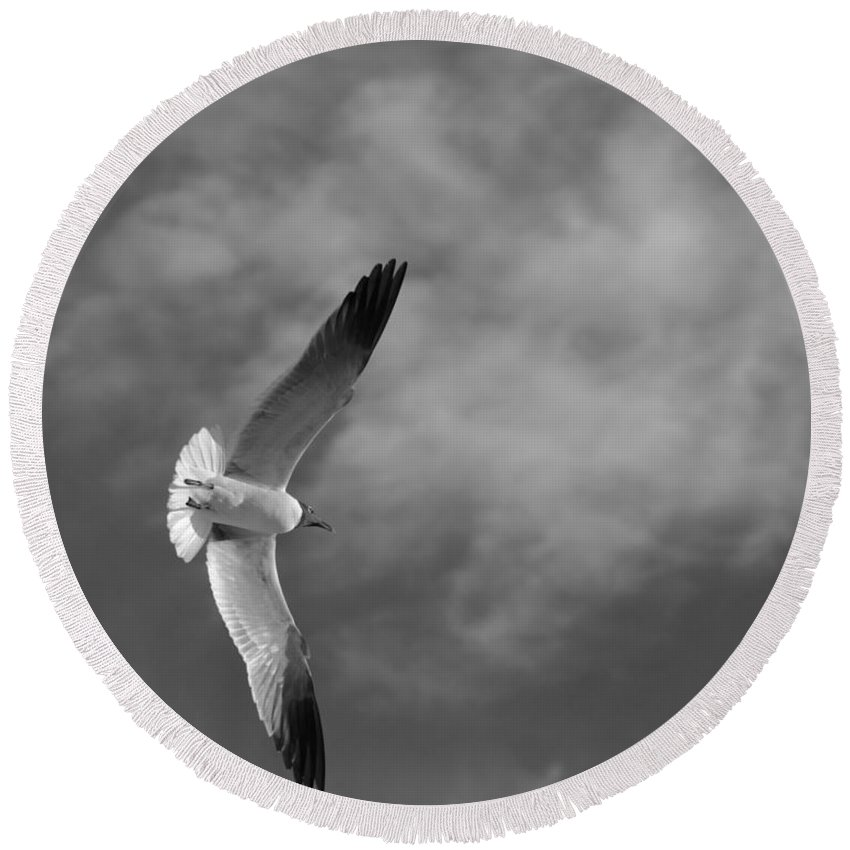 Seagull Round Beach Towel featuring the photograph Wings by Don Spenner