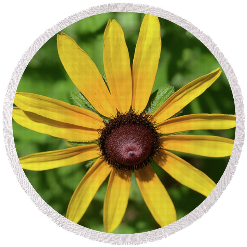 Flower Round Beach Towel featuring the photograph Yellow by MHmarkhanlon