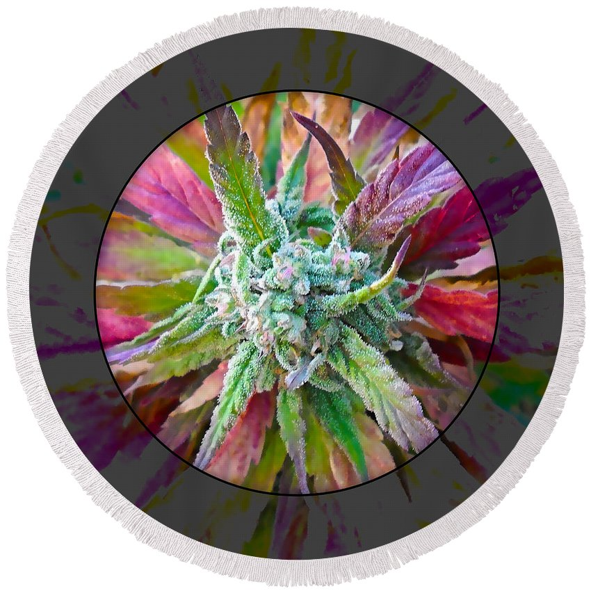 Cannabis Round Beach Towel featuring the mixed media Cannabis 420 Collection by Marvin Blaine