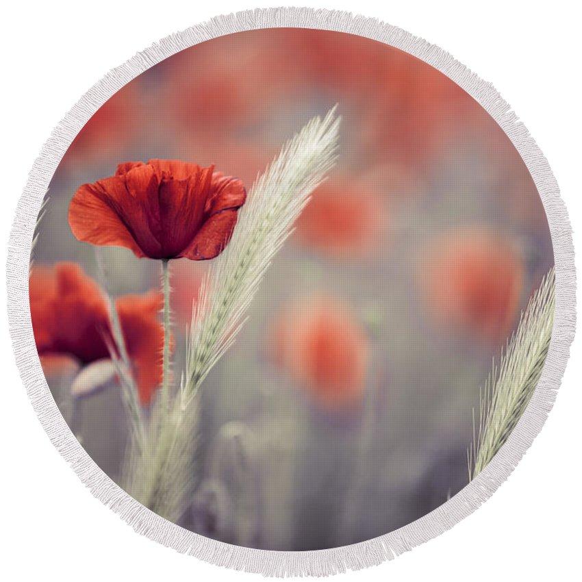 Poppy Round Beach Towel featuring the photograph Summer Poppy Meadow by Nailia Schwarz