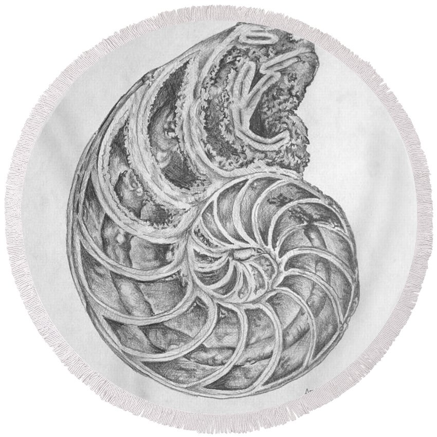 Shells Round Beach Towel featuring the drawing Untitled by Adam Vance
