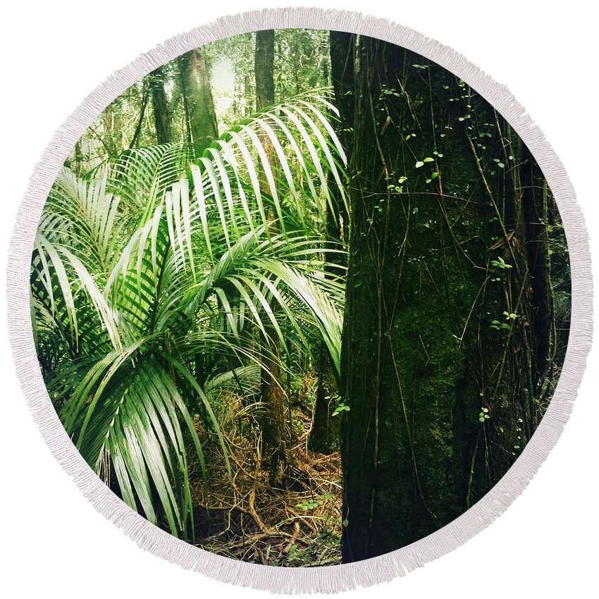 Rain Forest Round Beach Towel featuring the photograph Jungle 72 by Les Cunliffe