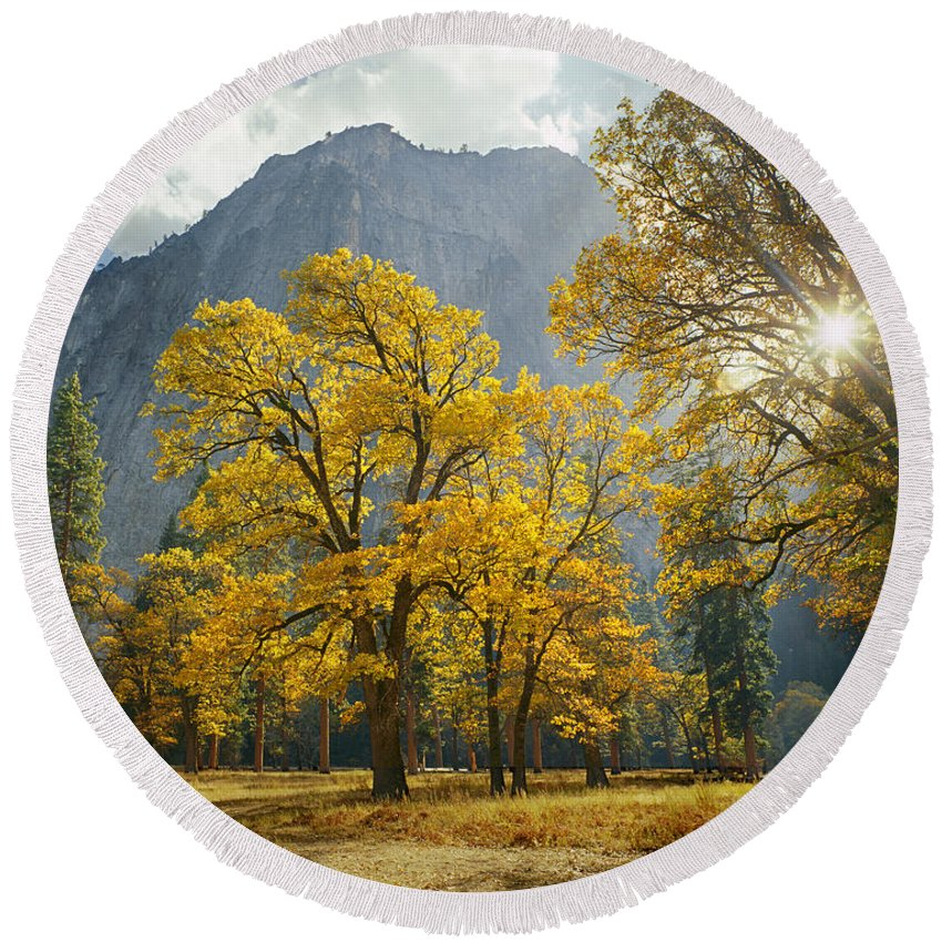 Oak Trees Round Beach Towel featuring the photograph 1m6611-oak Trees And Middle Cathedral Rock In Autumn by Ed Cooper Photography