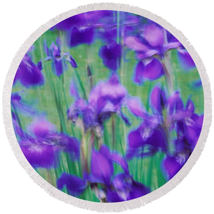 Photography Round Beach Towel featuring the photograph Close-up Of Purple Flowers by Panoramic Images