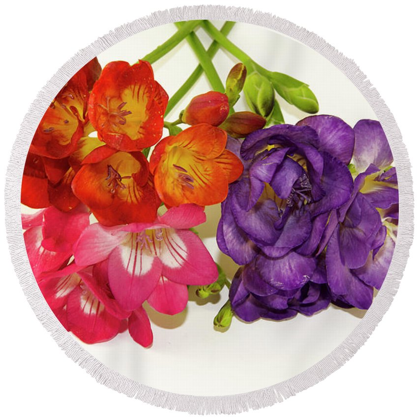 Flowers Round Beach Towel featuring the photograph Colorful Freesia by Elvira Ladocki