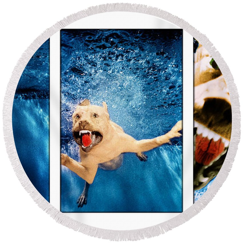 Dog Round Beach Towel featuring the photograph Dog Underwater Series by Jill Reger