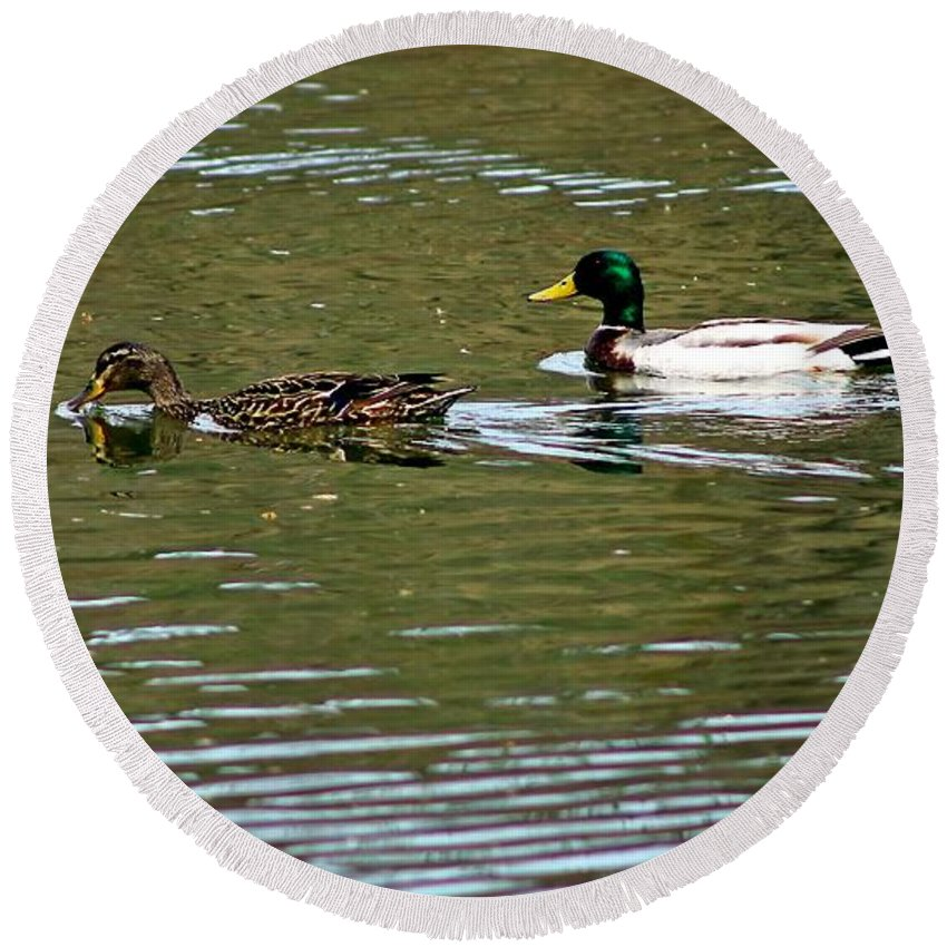 Ducks Round Beach Towel featuring the photograph 2 Ducks by Karl Rose