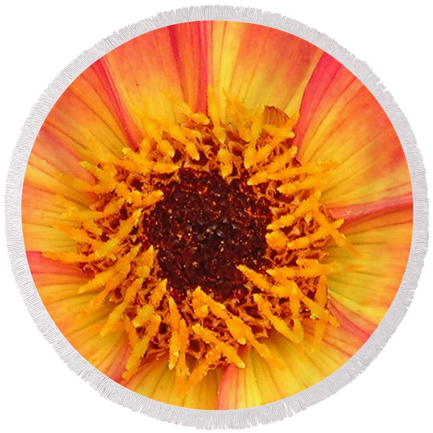 Flower Round Beach Towel featuring the photograph Flower by Diane Greco-Lesser
