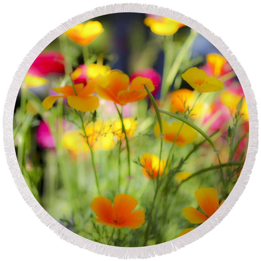 Yellow Round Beach Towel featuring the photograph Flowering Garden by Gal Eitan