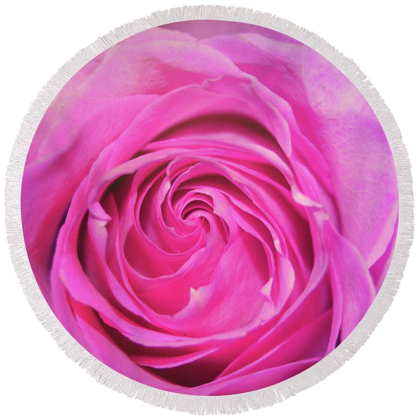 Rose Round Beach Towel featuring the photograph Hot Pink by JAMART Photography
