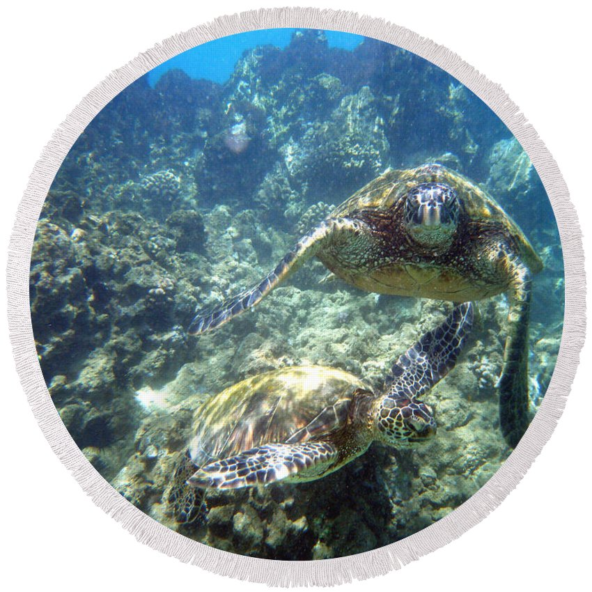 Sea Turtle Round Beach Towel featuring the photograph Just The Two Of Us by Angie Hamlin