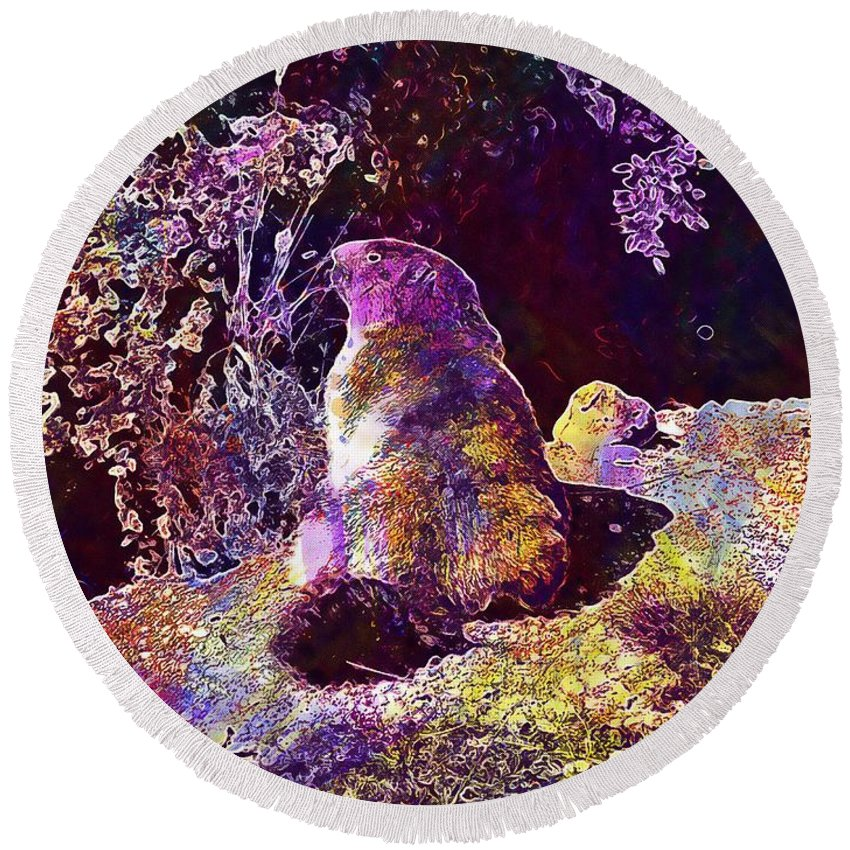 Mountain Round Beach Towel featuring the digital art Mountain Marmot Wildlife Animals by PixBreak Art
