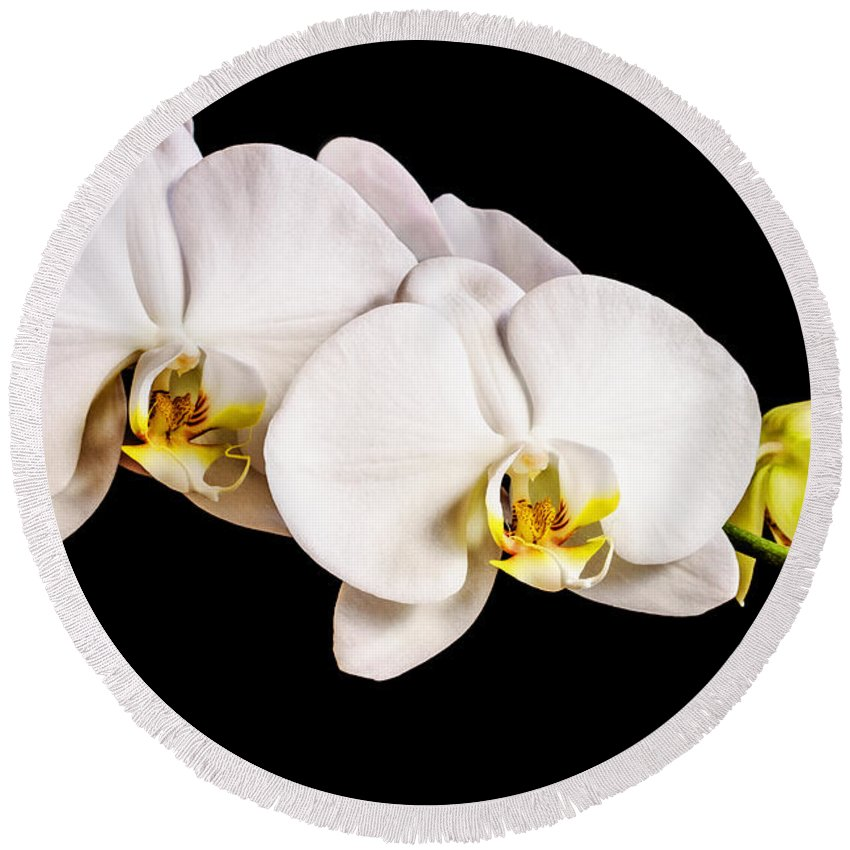 Orchid Round Beach Towel featuring the photograph Orchid by Scott Pellegrin