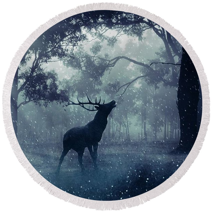 Deer Round Beach Towel featuring the photograph Stag by FL collection