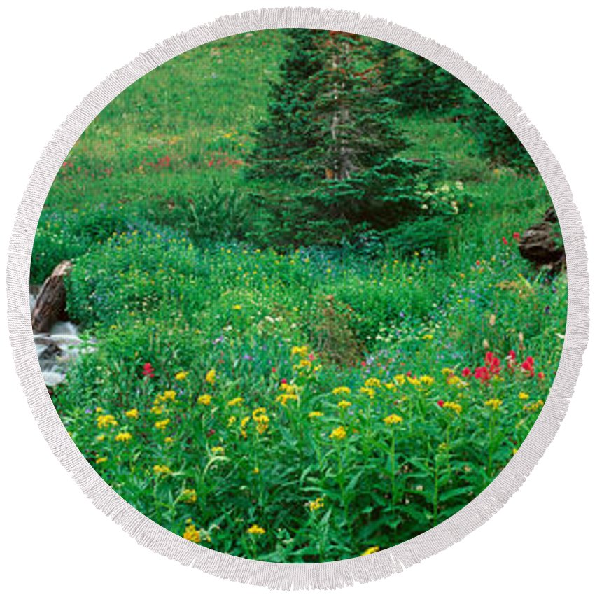 Photography Round Beach Towel featuring the photograph Stream And Alpine Flowers, Ouray by Panoramic Images