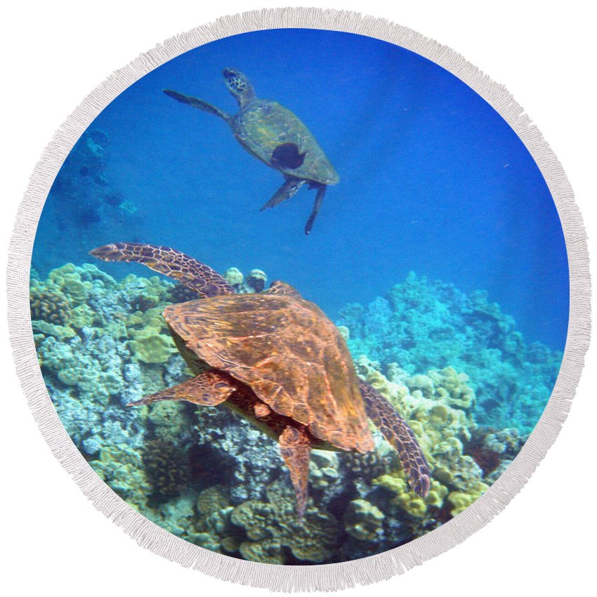 Sea Turtles Round Beach Towel featuring the photograph Tag You're It by Angie Hamlin