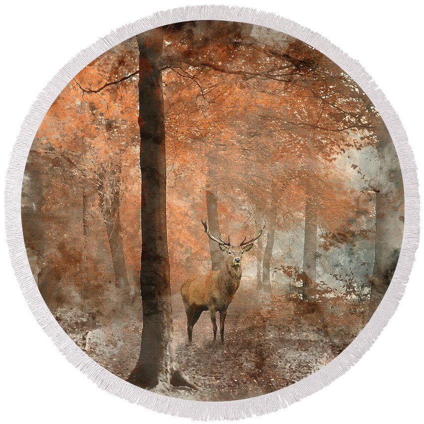 Landscape Round Beach Towel featuring the photograph Watercolour Painting Of Beautiful Image Of Red Deer Stag In Fogg by Matthew Gibson