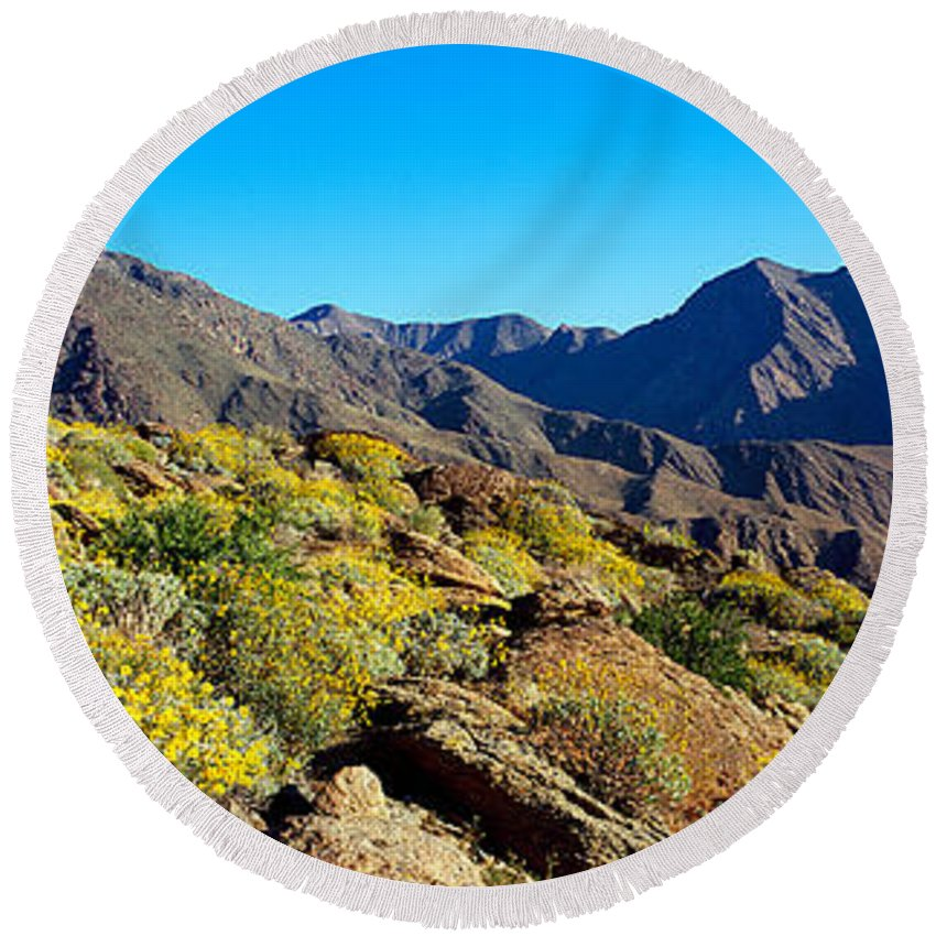 Photography Round Beach Towel featuring the photograph Wildflowers On Rocks, Anza Borrego by Panoramic Images
