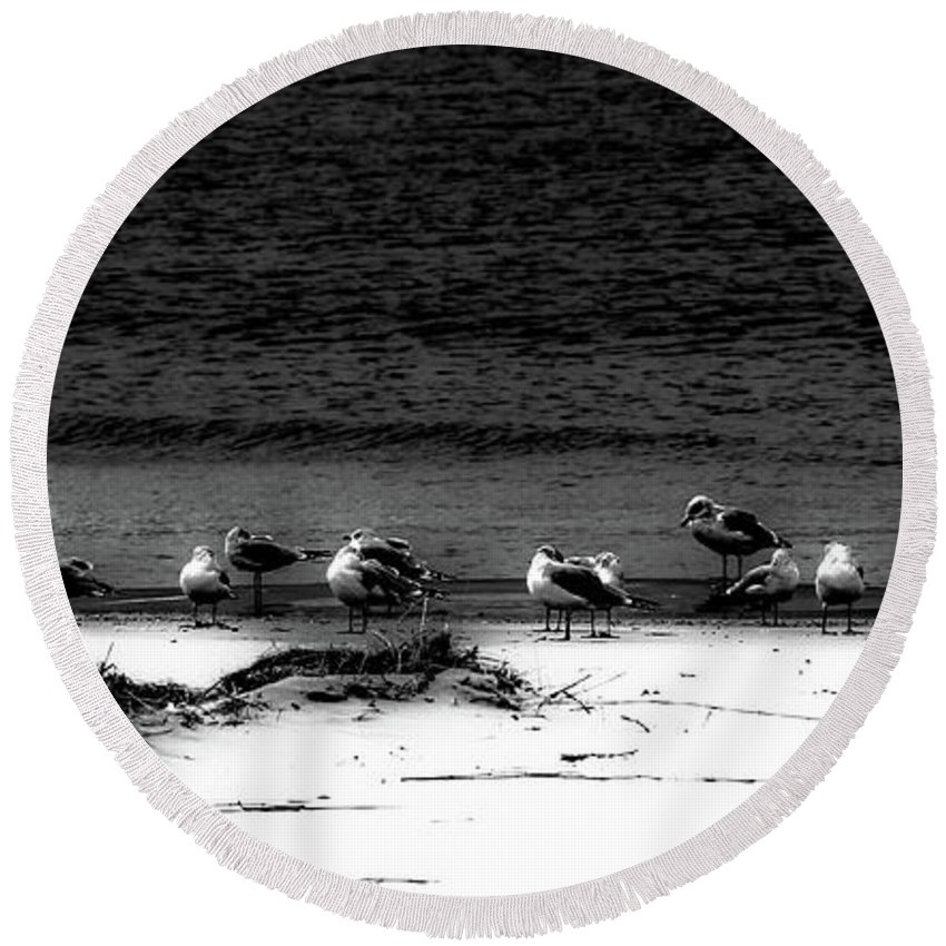 Black & White Round Beach Towel featuring the photograph 22 Gulls by Donna Fonseca Newton