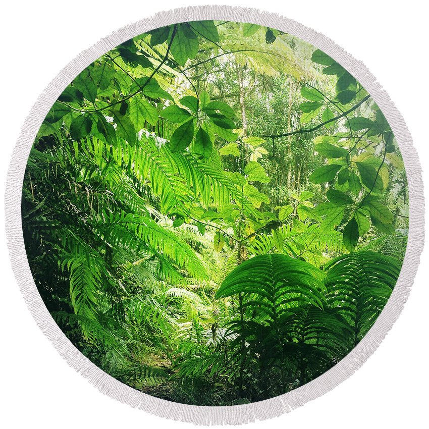 Rain Forest Round Beach Towel featuring the photograph Jungle Leaves by Les Cunliffe