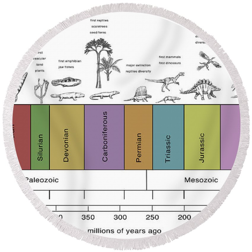 Paleozoic Round Beach Towel featuring the photograph Geologic Time Line by Spencer Sutton