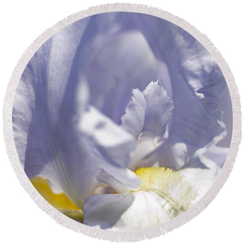 Genus Iris Round Beach Towel featuring the photograph Iris Flowers by Tony Cordoza